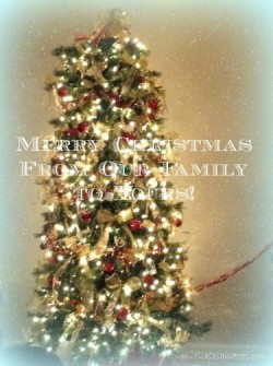 Have a Merry Christmas!